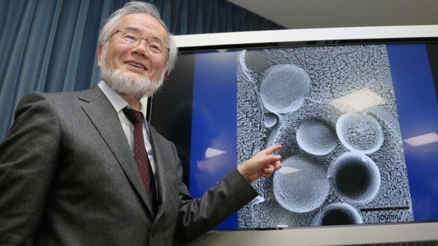 دانشمند ژاپنی یوشینوری اُسومی برنده نوبل پزشکی ۲۰۱۶ شد